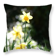 In The Springtime Sunshine Throw Pillow