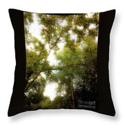 In The Summer Time When The Weather Was Fine Throw Pillow