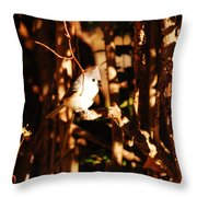 In The Sunlight Throw Pillow