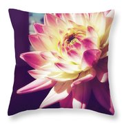 In The Sunshine Throw Pillow