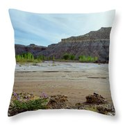 In The Valley Low Throw Pillow