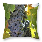 In The Vineyard Throw Pillow by Nancy Ingersoll