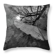 In The Water Bw  Throw Pillow