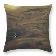 Mach Loop Throw Pillow