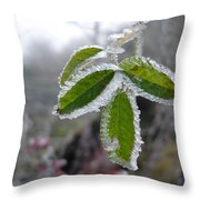 In The Winter Sunlight Throw Pillow