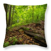 In The Woods_2 Throw Pillow