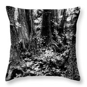 In Thick Throw Pillow