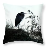 In This Place I Rest Throw Pillow
