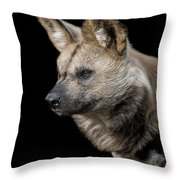 In To The Distance Throw Pillow