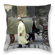 In Vienna Throw Pillow