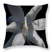Inappropriate Gesture Throw Pillow