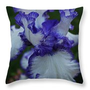 Indelible Passion Throw Pillow