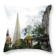 Independence Park 12 Throw Pillow