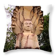 Independence Park 5 Throw Pillow