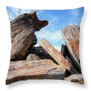 Indian Canyon Rocks Throw Pillow