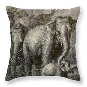 Indian Elephant, Endangered Species Throw Pillow