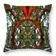 Indian Good Luck Throw Pillow