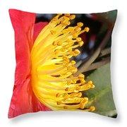Indian Hawthorn Profile Throw Pillow