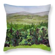 Hour Pond Mountain, Indian Lake Overlook Panorama 2 Throw Pillow