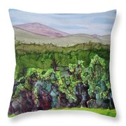 Chimney Mountain, Indian Lake Overlook Panorama 4 Throw Pillow