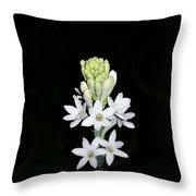 Indian Lily Throw Pillow