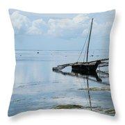 Indian Ocean At Lowtide Throw Pillow