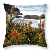 Indian Paintbrush At Point Lobos Throw Pillow