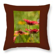 Bright Indian Blanket Throw Pillow