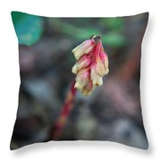 Indian Pipe 1 Throw Pillow