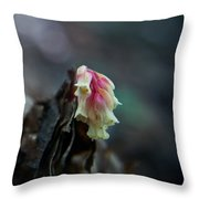 Indian Pipe 2 Throw Pillow