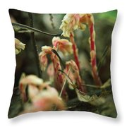 Indian Pipe 4 Throw Pillow