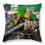 Indian Pipe 6 Throw Pillow