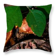 Indian Pipe 7 Throw Pillow