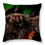 Indian Pipe 8 Throw Pillow