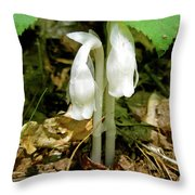 Indian Pipes - Monotropa Uniflora Throw Pillow