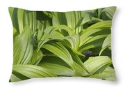 Indian Poke - Veratrum Veride-  Throw Pillow by Erin Paul Donovan