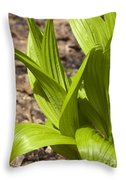 Indian Poke -veratrum Veride- Throw Pillow