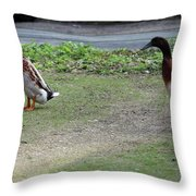 Indian Runner Ducks Throw Pillow
