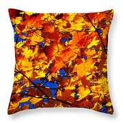 Indian Summer ... Throw Pillow