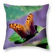 Indiana Angel Wing Throw Pillow