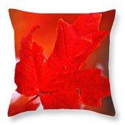 Indiana Fall Throw Pillow