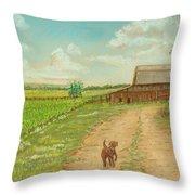 Indiana Farm Throw Pillow