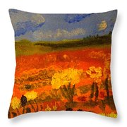 Indians Lands Throw Pillow