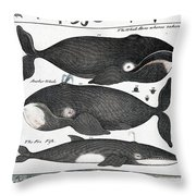 Indigenous Fish, Greenland, 18th Century Throw Pillow