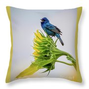 Indigo Bunting Sunflower Throw Pillow