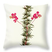 Indigo Plant Throw Pillow