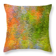 Otherwise Quiescent Throw Pillow