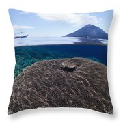 Indonesia, Coral Reef Throw Pillow