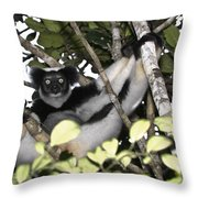 Indri Indri Throw Pillow
