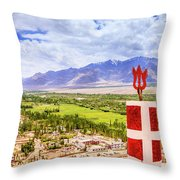 Indus Valley Throw Pillow